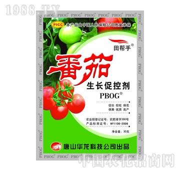 华龙-番茄生长促控剂