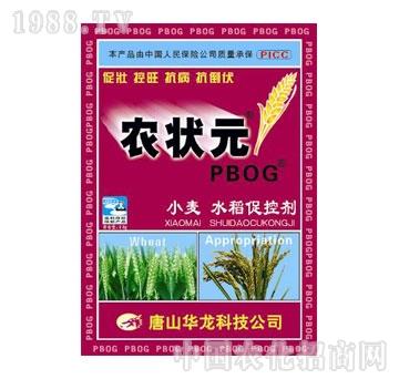 华龙-农状元小麦水稻促