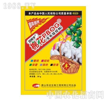 华龙-水稻生长促控剂