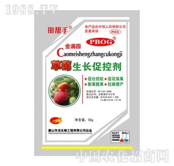 华龙-草莓生长促控剂