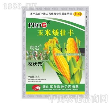 华龙-玉米矮壮丰