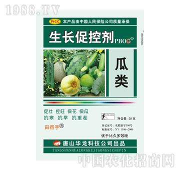 华龙-瓜类促控剂