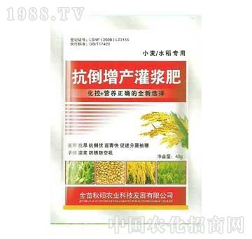 秋硕-抗到增产灌浆肥