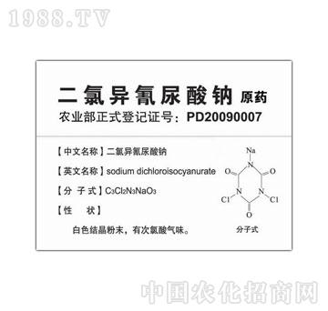 康派伟业-二氯异氰尿酸钠(原药)