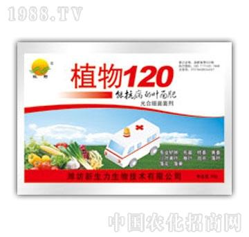 新生力-植物120