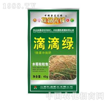 凯盛-滴滴绿水稻粒粒饱