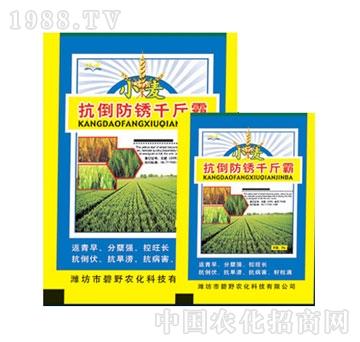 碧野-小麦抗倒防锈千斤