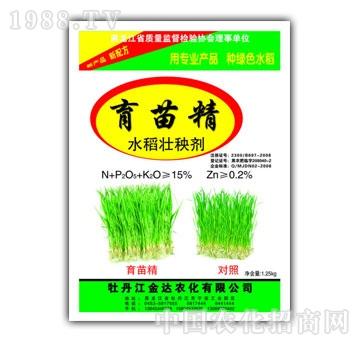 金达-育苗精水稻壮秧剂