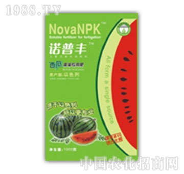 爱普-茄果专用滴灌肥