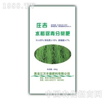 庄吉-水稻返青分蘖专用肥