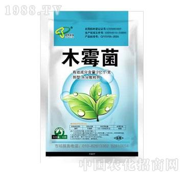 中农天马-木霉菌