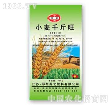 苏北-小麦专用肥