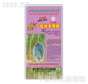 生态肥业-桉树专用肥