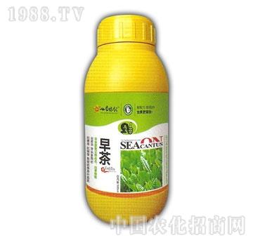 春雨生物-早茶