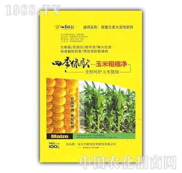 春雨生物-玉米粗缩净1
