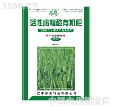 普天-活性腐植酸小麦专用底肥