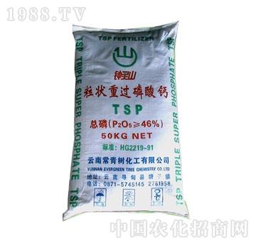 常青树-重过磷酸钙