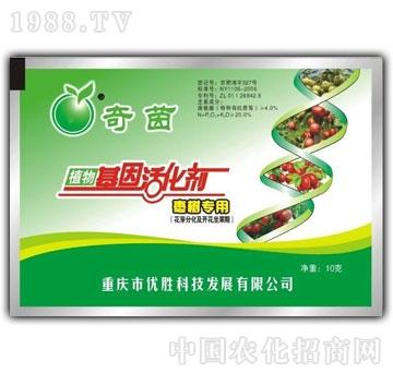 优胜-枣树专用活化剂
