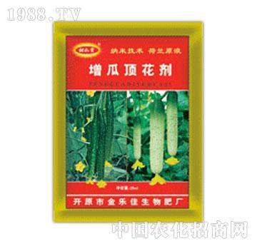 森蕾草-增瓜顶花季