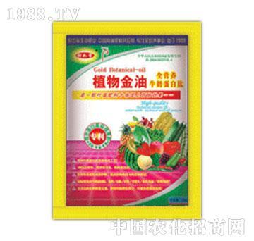 森蕾草-植物金油