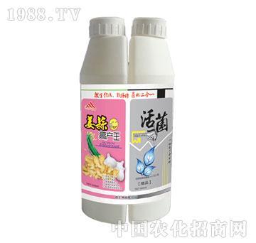 万邦-活菌姜蒜高产王