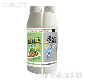 万邦-豆豆乐