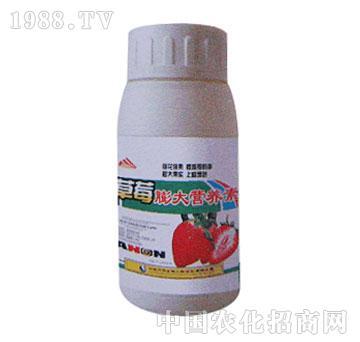 万邦-草莓膨大营养素