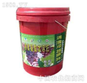 圣地宝-含氨基酸水溶肥