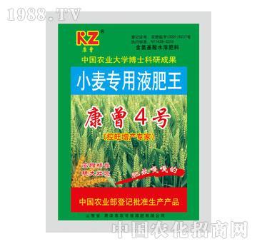 农可信-康曾4号小麦专