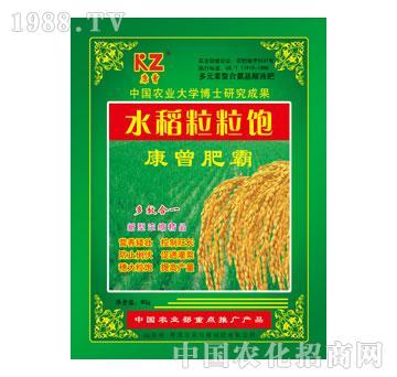 农可信-康曾水稻粒粒饱