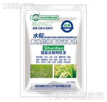 神农化工-优果-水稻黄