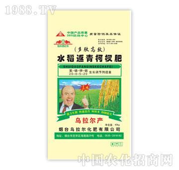 乌拉尔-水稻返青柯杈肥