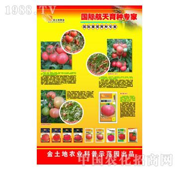 金土地-展板太空甜辣椒|六安市金土地农业科普示范园