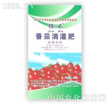 准噶尔-锦禾-番茄滴灌肥