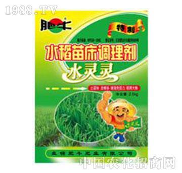 肥牛-水灵灵水稻苗床调理剂