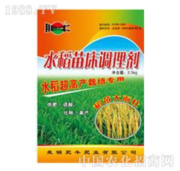 肥牛-大宝水稻壮秧剂
