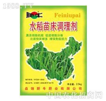 肥牛-大宝水稻苗床调理剂