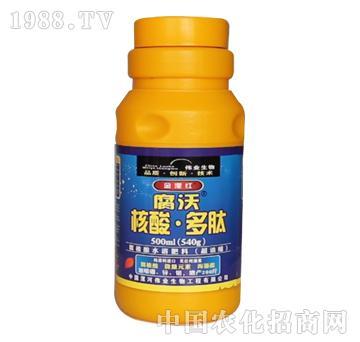 伟业-腐沃-核酸多肽