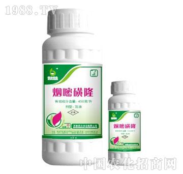 倍尔-烟嘧磺隆