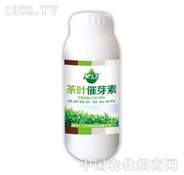 汇尤-茶叶催芽素