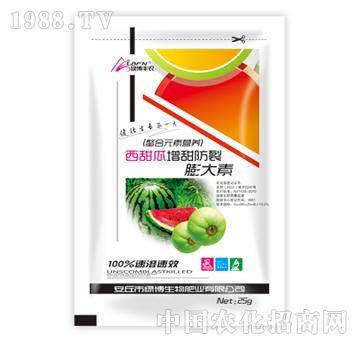 绿博-西甜瓜增甜防裂膨大素