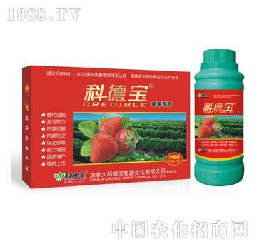科德宝-草莓专用