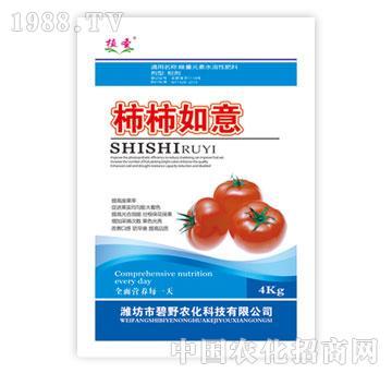 碧野-柿柿如意