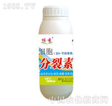 碧野-细胞分裂素瓶