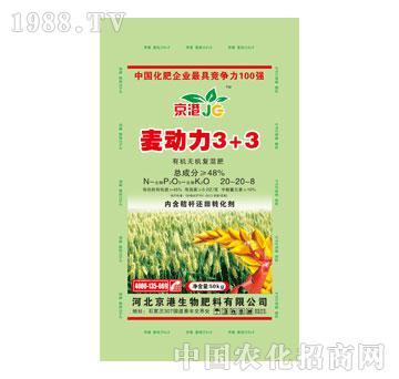 京港-麦动力3+3