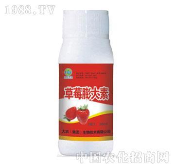 草莓膨大素