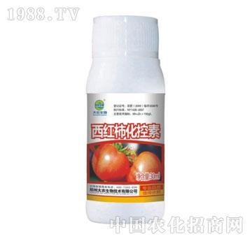 西红柿化控素