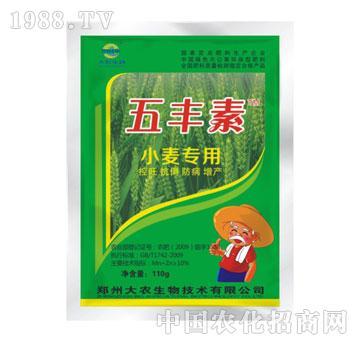 五丰素小麦专用