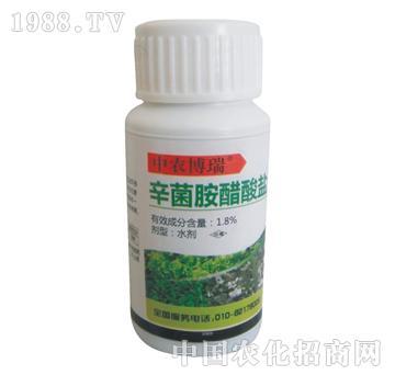 博瑞-辛菌胺醋酸盐