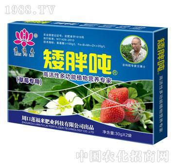 道福来矮胖吨(草莓专用)